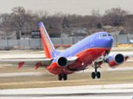 Second Southwest Airlines plane has to make emergency landing after bird strike