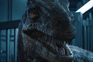 The final trailer for Jurassic World: Fallen Kingdom shows that people never learn from their mistakes