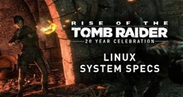 here are the system requirements for playing rise of the tomb raider on linux