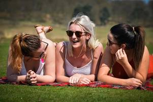 Pictures of people enjoying themselves in Bradgate Park on the hottest day of the year