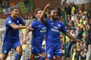 cardiff city's immense character, fulham's false dawn and why i believe millwall will have crucial say in race for premier league