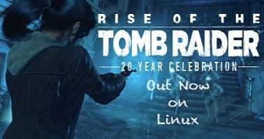 rise of the tomb raider: 20 year celebration is out now on linux
