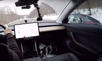 Tesla Model 3 Drag Races Porsche 911 on the Street, Destruction Occurs