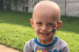 family plans fundraising day of celebration that will help support toddler dawson's legacy