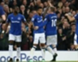 Everton 1 Newcastle United 0: Walcott scuppers Benitez's century celebrations