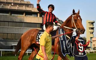 hk tips: purton can bag win on super chic as he bids to become champion