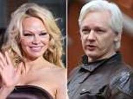 pamela anderson opens up about her odd relationship with friend julian assange