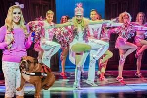 larkhall pooch stars in legally blonde the musical alongside eurovision singer