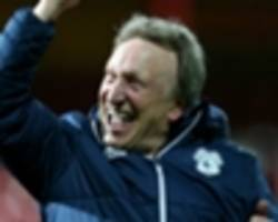 latest premier league odds: cardiff city 9/1 for a top half finish after securing automatic promotion