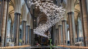 thousands of birds 'flown' in cathedral after nerve agent attack