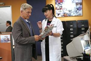 ratings: first 'ncis' without pauley perrette comes back down to earth