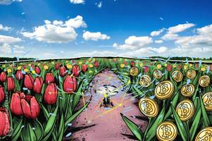 exec of $5.1 trln investment firm makes tired comparison of crypto to tulips