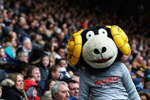 irritating derby fans has been unexpected bonus of stoke's manager hunt