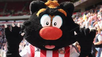 sunderland: tony davison named club's managing director after stint as mascot