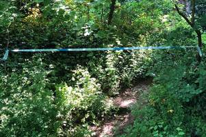 Mystery surrounds Hertford police cordon as emergency services called to woodland