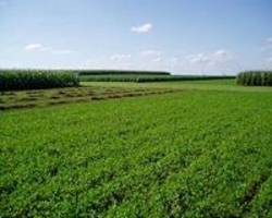 long-term study shows crop rotation decreases greenhouse gas emissions