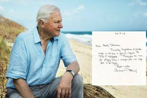 david attenborough backs cornwall student's plastic-free beaches campaign with personal touch