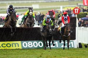 paul nicholls pays tribute to 2008 gold cup winner denman who has died at the age of 18
