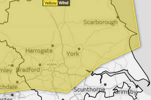 met office issues weather warning for east yorkshire as storm hector brings 60mph gusts
