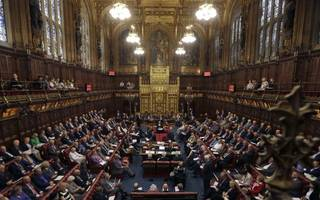 Government suffers further Lords defeat over Brexit bill
