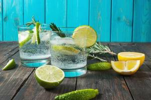 Drinking gin and tonic can help stop hayfever - seriously