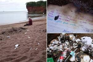 Students' end-of-exams beach party leaves beauty spot in 'shameful' state