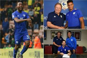 cardiff city's transfer deals so far are very smart but what does it all mean for junior hoilett?