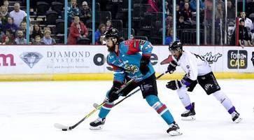 sheffield steelers swoop for two more belfast giants players