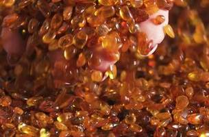 Nature's Gemstone | National Geographic in Russia