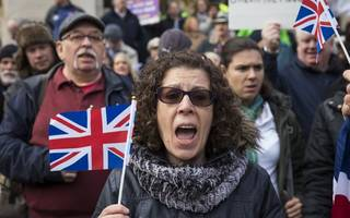brexiters slam single market for goods suggestion