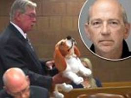 stuffed animal used in court during msu employee's bestiality case