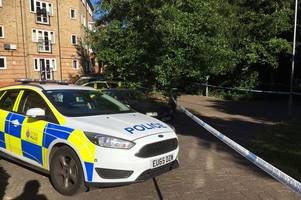 chelmsford murder: man was stabbed repeatedly before he died