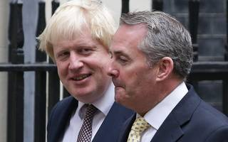 trade boss liam fox says extended brexit transition would be acceptable
