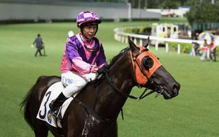 hk horse racing betting tips: watch wong sit pretty and win valley feature