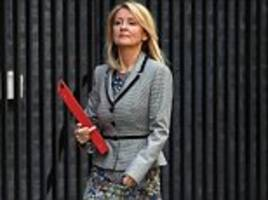 whitehall watchdog issues extraordinary rebuke to cabinet minister esther mcvey