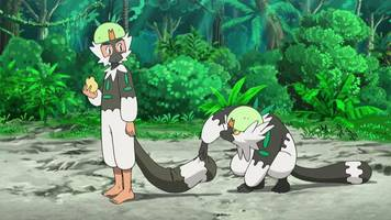 pokémon episode skips us air for the first time in 16 years