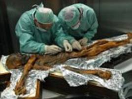 Ötzi's last meal: Iceman feasted on high-fat diet of Ibex meat