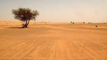 number of migrants 'abandoned by algeria' in sahara drops