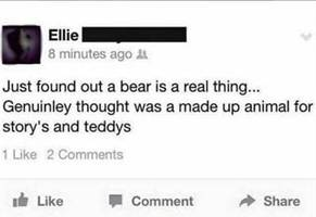 25 Facebook Fails that are Funny as F*ck