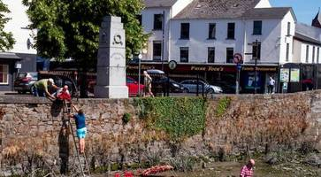 parties united in outrage over attack on poppy wreaths in newry