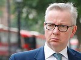 michael gove admits vote leave was wrong to stoke fears about immigration