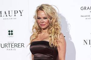 pamela anderson actually asked alec baldwin to lobby trump for a pardon of julian assange
