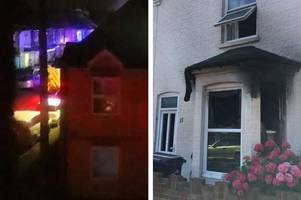 snakes, spiders, lizards and cats died in a ramsgate house fire and two kittens are still missing