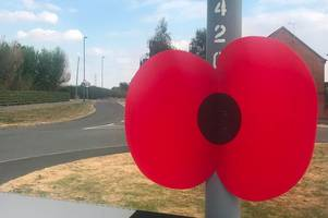 why poppies are popping up in this derbyshire village