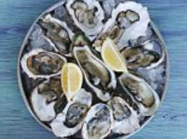 Florida man, 71, dies after being infected with deadly bacteria he contracted by eating raw oysters