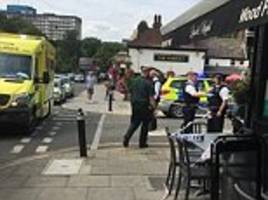 Man is arrested on suspicion of murder after woman dies of serious injuries near west London pub