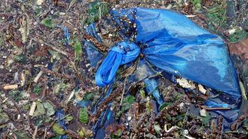 could this 'biodegradable bag' cut plastic pollution?