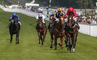 racing tips: wall looks a great bet in tonight's scottish stewards' cup