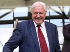 sir david attenborough says health and safety gone mad is stopping uk children enjoy nature outdoors