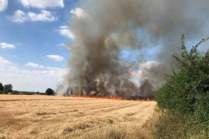 plumes of smoke fill air as farmer's field turns into inferno
